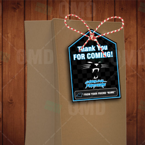 Carolina Panthers - Bag Tag - Product 1-1