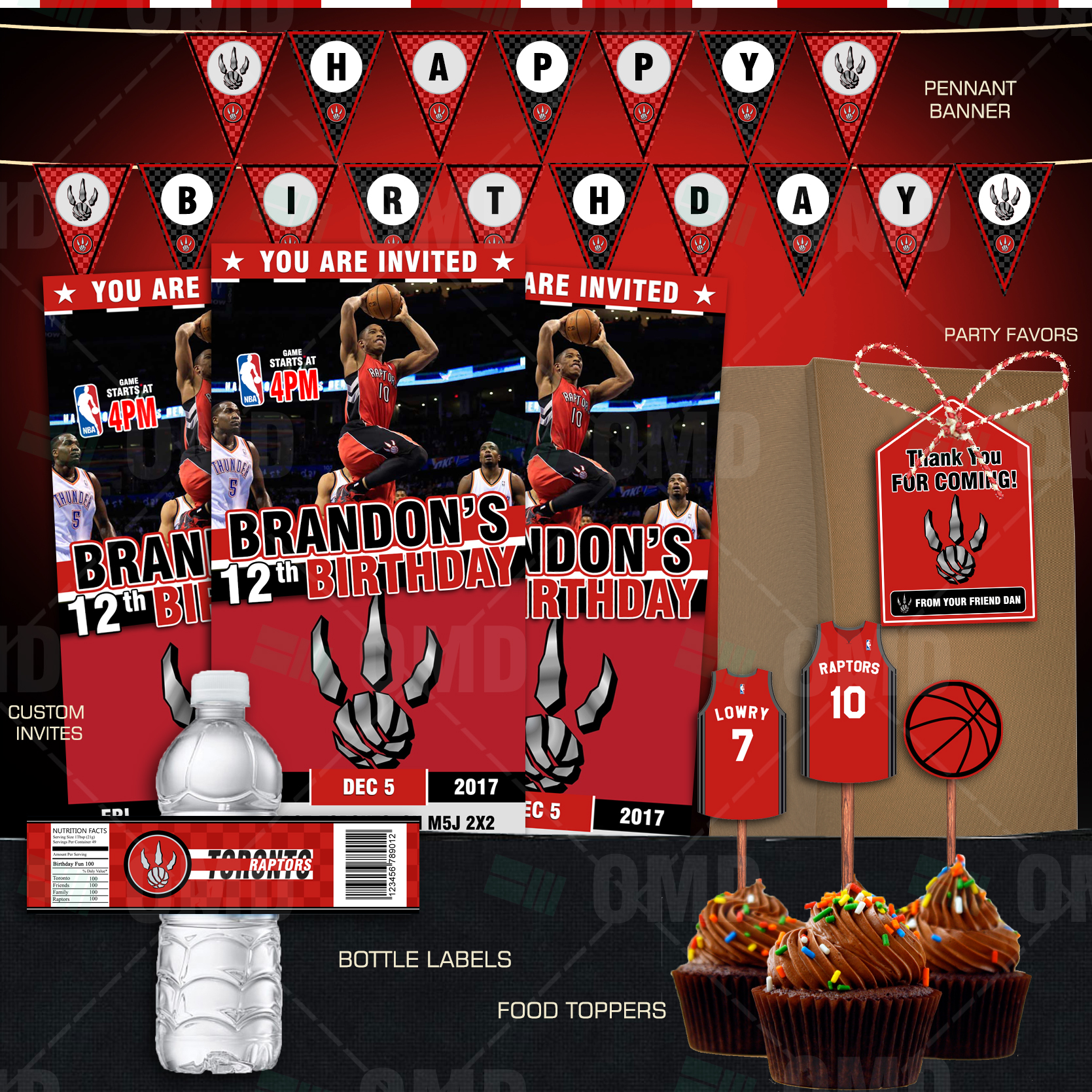 Toronto Raptors Basketball Ultimate Party Package Sports